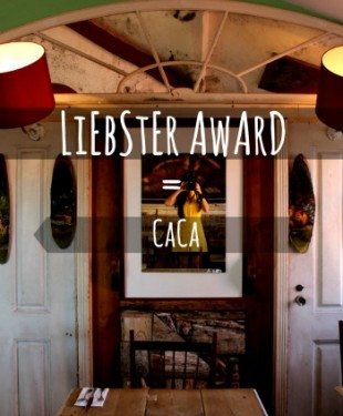 liebster-award-bomdiaportugal